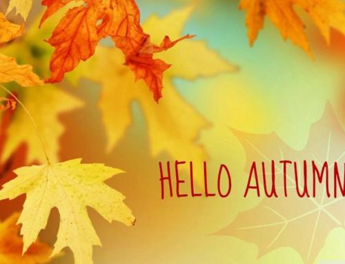 Fall Prep Checklist!
